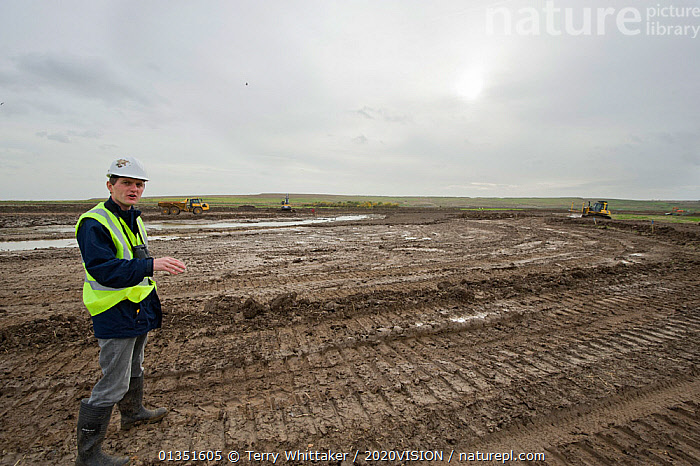 RSPB Project Manager Dave Hedges at site. Wetland habitat ecosytem creation for the RSPB by Breheny Civil Engineers at Bowers Marsh RSPB Reserve, Thames Estuary, Essex, UK. November 2011.  Model released  ,  2020VISION,COASTS,CONSERVATION,ENGLAND,ENVIRONMENTAL,EUROPE,GREATER THAMES FUTURESCAPES,HABITAT,HABITAT CREATION,LANDSCAPES,MAN,MUD,MUDDY,PEOPLE,RESERVE,TWH_021110_0015,UK,URBAN,WETLANDS,WORKING,United Kingdom,2020cc  ,  Terry Whittaker / 2020VISION