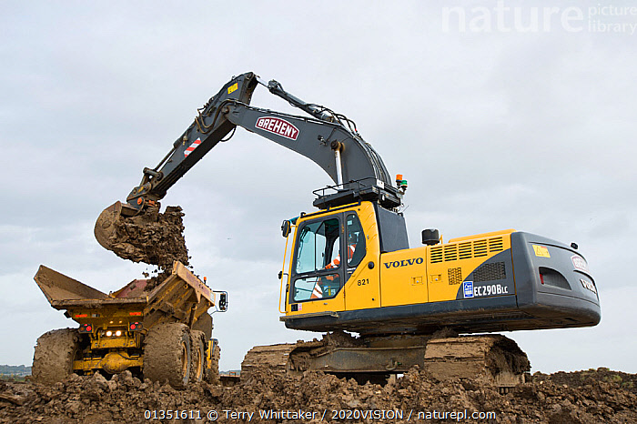 Heavy earth excavator removes clay for future replacement with topsoil. Wetland habitat ecosytem creation for the RSPB by Breheny Civil Engineers at Bowers Marsh RSPB Reserve, Thames Estuary, Essex, UK. November 2011.  Machine operator Alan Deval. Model released  ,  2020VISION,COASTS,CONSERVATION,ENGLAND,ENVIRONMENTAL,EUROPE,GREATER THAMES FUTURESCAPES,HABITAT,HABITAT CREATION,LANDSCAPES,MACHINERY,MAN,MEN,MUD,MUDDY,PEOPLE,RESERVE,TWH_021110_0054,UK,URBAN,WETLANDS,WORKING,United Kingdom  ,  Terry Whittaker / 2020VISION