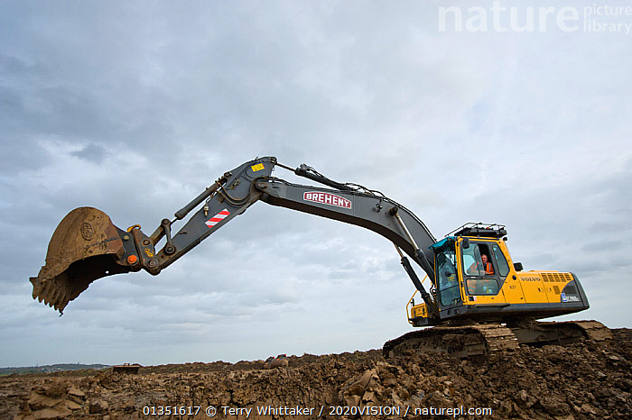 Heavy earth excavator removes clay for future replacement with topsoil. Wetland habitat ecosytem creation for the RSPB by Breheny Civil Engineers at Bowers Marsh RSPB Reserve, Thames Estuary, Essex, UK. November 2011.  Machine operator Alan Deval. Model released  ,  2020VISION,COASTS,CONSERVATION,ENGLAND,ENVIRONMENTAL,EUROPE,GREATER THAMES FUTURESCAPES,HABITAT,HABITAT CREATION,LANDSCAPES,MACHINERY,MAN,MEN,MUD,MUDDY,PEOPLE,RESERVE,TWH_021110_0081,UK,URBAN,WETLANDS,WORKING,United Kingdom  ,  Terry Whittaker / 2020VISION