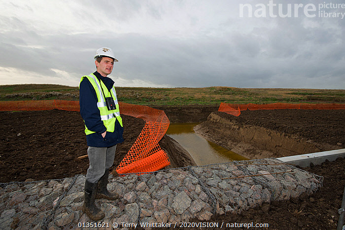 RSPB Project Manager Dave Hedges at the new water vole habitat. Wetland habitat ecosytem creation for the RSPB by Breheny Civil Engineers at Bowers Marsh RSPB Reserve, Thames Estuary, Essex, UK. November 2011. Model released  ,  2020VISION,COASTS,CONSERVATION,ENGLAND,ENVIRONMENTAL,EUROPE,GREATER THAMES FUTURESCAPES,HABITAT,HABITAT CREATION,LANDSCAPES,MAN,MUD,MUDDY,PEOPLE,RESERVE,RODENTS,TWH_021110_0152,UK,URBAN,VOLES,WETLANDS,WORKING,Mammals,United Kingdom  ,  Terry Whittaker / 2020VISION