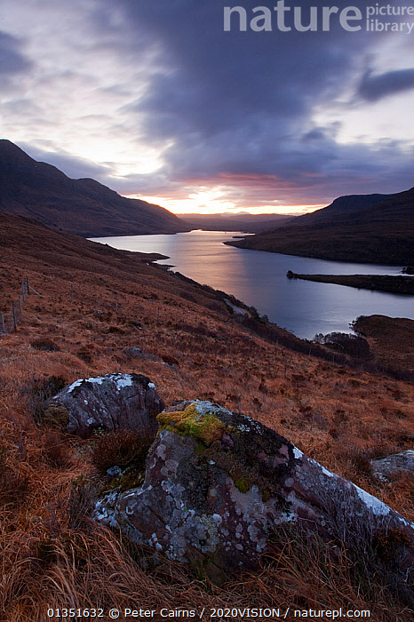 Dawn over Loch Lurgainn, Inverpolly, Sutherland, Highlands, Scotland, UK, January 2011  ,  2020VISION,ASSYNT,ATMOSPHERIC,COASTS,COIGACH,DAWN,EUROPE,LANDSCAPES,MOORLAND,MOUNTAINS,PCA_3_210111_06,ROCKS,SCOTLAND,SUNRISE,UK,UPLANDS,VERTICAL,WATER,WINTER,United Kingdom  ,  Peter Cairns / 2020VISION