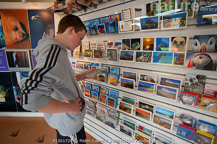 Nature Picture Library - Young man looking at cards inside