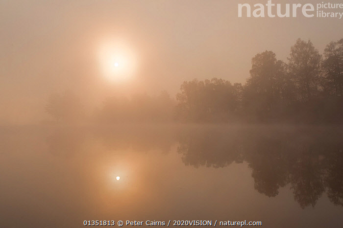 Loch Vaa at dawn, spring, Cairngorms National Park, Highlands, Scotland, UK, April 2011  ,  2020VISION,ATMOSPHERIC,CALEDONIAN PINEWOODS,CALM,DAWN,EUROPE,FORESTS,LAKES,LANDSCAPES,MIST,PCA_14_170511_23,REFLECTIONS,SCOTLAND,SUN,SUNRISE,TREES,UK,WATER,PLANTS,United Kingdom  ,  Peter Cairns / 2020VISION