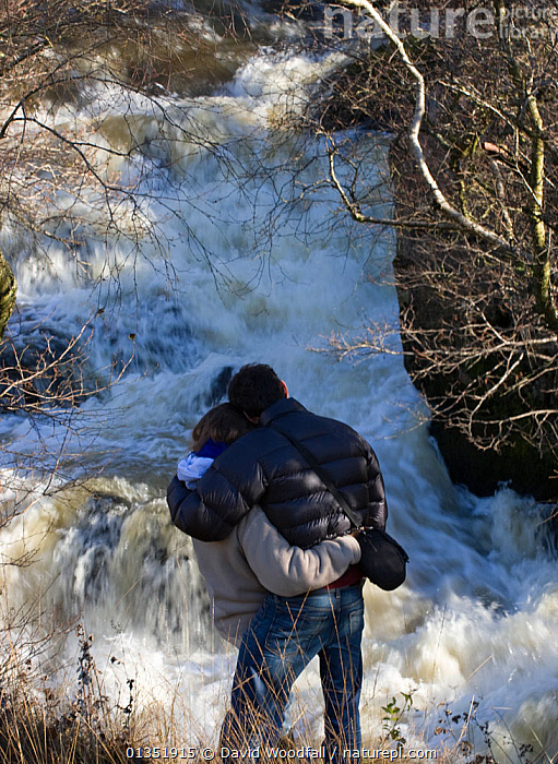 Rear view of couple watching leaping salmon. River Marteg SSSI, Gilfach farm nature reserve, Radnorshire Wildlife Trust, November. Model released  ,  COUPLE,EUROPE,MALE FEMALE PAIR,MAN,NATURE,OUTDOORS,PEOPLE,RESERVE,RIVERS,SSSI,STREAMS,TWO,UK,VERTICAL,WALES,WATER,WATERFALLS,WOMAN,United Kingdom  ,  David Woodfall