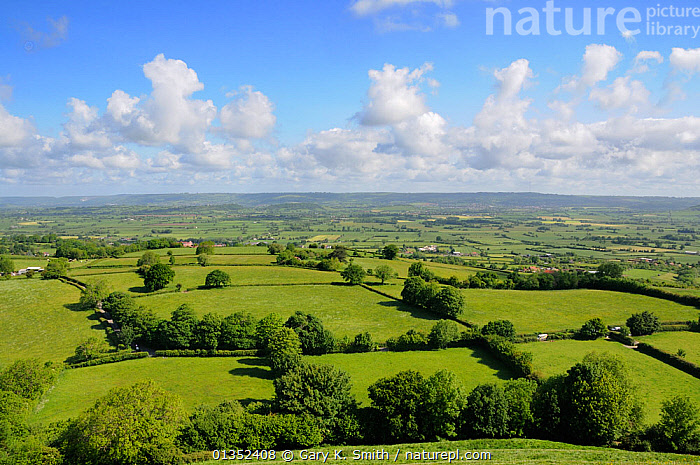 View of the Somerset Countryside looking north from Glastonbury Tor. Somerset, England, May.  ,  CALM,COUNTRYSIDE,EUROPE,FARMLAND,FIELDS,GRASSLAND,GREEN,HEDGEROWS,LANDSCAPES,PEACEFUL,SOMERSET,SPACE,UK,United Kingdom  ,  Gary K. Smith