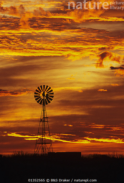 Windmill at sunset. Rio Grande Valley, Texas, USA.  ,  LANDSCAPES,NORTH AMERICA,ORANGE,SILHOUETTES,TEXAS,WINDMILL,CLOUDS,SKIES,SUNSET,USA,VERTICAL,WINDMILLS,Weather  ,  B&S Draker