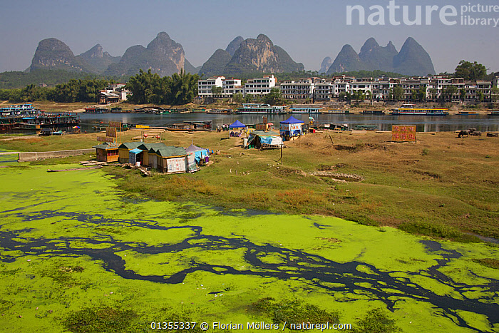 Polluted tributary of the Li River with town and mountains on the horizon. Yangshuo, Guangxi, China, November 2006.  ,  ASIA,BUILDINGS,catalogue4,CHINA,contamination,damage,ENVIRONMENTAL,environmental issues,guangxi,housing,LANDSCAPES,Li River,makeshift,Mountain,MOUNTAINS,Nobody,POLLUTION,poverty,river,Riverbank,RIVERS,town,TOWNS,WATER,water pollution,Yangshuo  ,  Florian Möllers