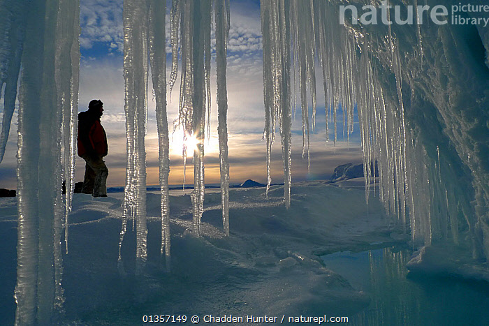 Person standing infront of long icicles, outside volcanic ice cave, Mount Erebus, Antarctica. Taken on location for BBC Frozen Planet series, 2009, ANTARCTICA,FORMATIONS,FROZEN,ICE,PEOPLE,POLAR,SUNLIGHT, Chadden Hunter