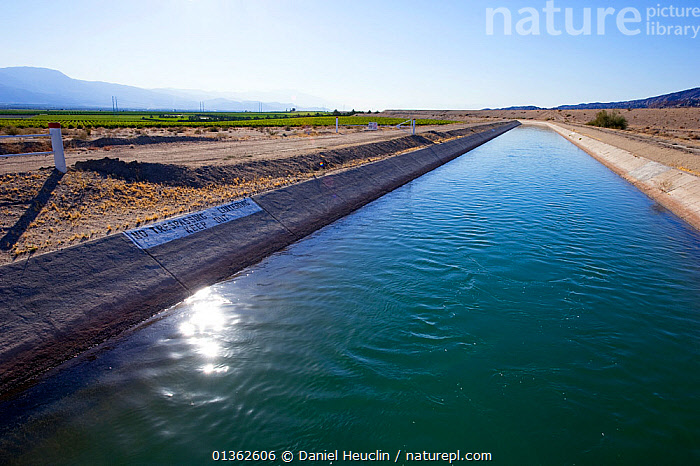 Coachella canal, water from Colorado river, California, USA, CANALS,FRESHWATER,IRRIGATION,LANDSCAPES,MANMADE,NORTH AMERICA,RIVERS,USA,WATER,Catalogue5, Daniel Heuclin
