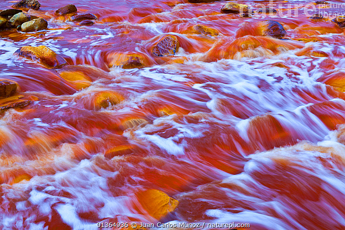 Red waters of the Rio Tinto, coloured by dissolved minerals, primarily iron. Andalusia, Spain, December 2011., ABSTRACT,ANDALUCIA,ANDALUSIA,EUROPE,HUELVA,MINERALS,RED,RIO,RIVERS,SPAIN,TINTO,WATER, Juan Carlos Munoz