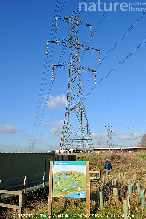 Electricity pylon and information board on Rainham Marsh RSPB Reserve, Thames Futurescapes Project, Essex, UK, January 2011  ,  2020VISION,BIRDS,COASTS,ELECTRICITY,ENERGY,ENGLAND,ENVIRONMENTAL,EUROPE,LANDSCAPES,MARSHES,OUTDOORS,PEOPLE,POWER,RESERVE,RSPB,SIGNS,UK,URBAN,VERTICAL,WADERS,WATERFOWL,WETLANDS,WINTER,United Kingdom,2020cc  ,  Terry Whittaker / 2020VISION