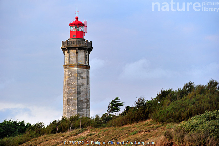 The lighthouse Phare des Baleines on the island Ile de R� during storm, Charente-Maritime, France September 2011  ,  BEACON,BUILDINGS,COASTAL,COASTS,EUROPE,HISTORICAL,LANDMARK,LANDSCAPES,LIGHTHOUSES,NAVIGATION,TOWERS  ,  Philippe Clement