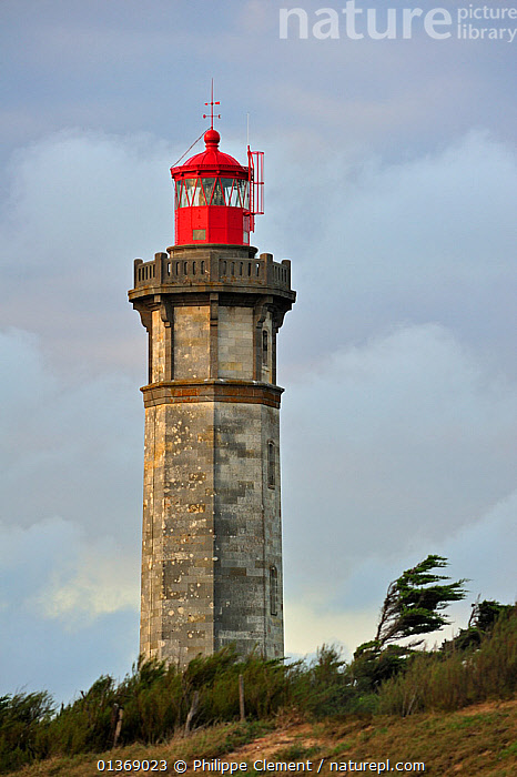 The lighthouse Phare des Baleines on the island Ile de R� during storm, Charente-Maritime, France September 2011  ,  BEACON,BUILDINGS,COASTAL,EUROPE,FRANCE,HISTORICAL,LANDMARK,LANDSCAPES,LIGHTHOUSES,MARINE,NAVIGATION,TOWERS,VERTICAL  ,  Philippe Clement