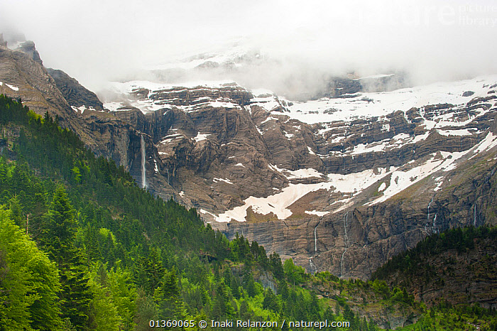 Gavarnie Falls, cascade down through the clouds from near the top of the mountain, Pyrenees, France, June. 2011.  ,  CIRQUE DE GAVARNIE,CLIFFS,CLOUDS,EUROPE,FRANCE,GEOLOGY,LANDSCAPES,MOUNTAINS,PEAKS,PYRENEES,SNOW,TREES,WATER,WATERFALLS,Weather,PLANTS  ,  Inaki Relanzon