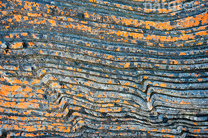 Harvey's Return Beach, geological details, North of Kangaroo Island, South Australia State, Australia, September 2011.  ,  ABSTRACT,AUSTRALASIA,AUSTRALIA,CLOSE UPS,COASTS,GEOLOGY,LANDSCAPES,PATTERNS,ROCK FORMATIONS,ROCKS  ,  Inaki Relanzon