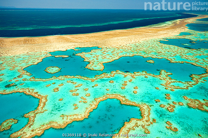 Whitsunday Islands, aerial view, Great Barrier Coral Reef, Queensland, Australia, October 2011.  ,  AERIALS,AUSTRALASIA,AUSTRALIA,BEACHES,COASTS,CORAL REEFS,ISLANDS,LANDSCAPES,MARINE,NP,OCEANS,PACIFIC,PATTERNS,RESERVE,TROPICAL,WATER,National Park  ,  Inaki Relanzon