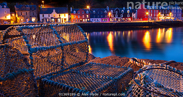 Lobster pots on harbourside at night, Tobermory harbour, Isle of Mull, Scotland.  ,  building exterior,catalogue5,COASTS,COLOURFUL,EUROPE,FISHING,fishing industry,focus on foreground,harbour,HARBOURS,Isle of Mull,LANDSCAPES,LIGHTS,lit up,lobster pot,local industry,MARINE,NIGHT,Nobody,outdoors,PANORAMIC,relections,Scenic,SCOTLAND,selective focus,small group of objects,Tobermory,Travel,UK,WATER,United Kingdom  ,  Alex Hyde