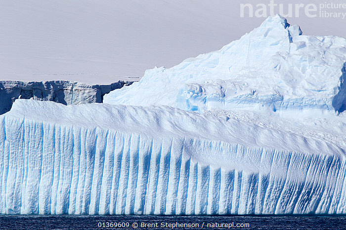Large grounded iceberg with grooved vertical channels. Half Moon Island, Antarctic Peninsula, Antarctica, December.  ,  ANTARCTICA,CLIMATE CHANGE,GLOBAL WARMING,ICE,ICEBERGS,LANDSCAPES,MELT,POLAR,THAW  ,  Brent Stephenson