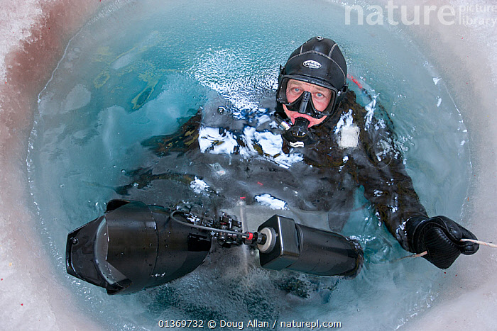 Wildlife cameraman Doug Allan prepares for a dive in hole drilled in sea ice. Ross Sea, McMurdo, Antarctica. Freeze frame book plate page 38.  ,  ALLAN,ANTARCTIC,ANTARCTICA,COLD,DIVING,DOUG,FILMING,FREEZE FRAME,ICE,LOOKING AT CAMERA,OUTDOORS,PEOPLE,PHOTOGRAPHERS,PORTRAITS,SURFACE,WATER,WORKING  ,  Doug Allan