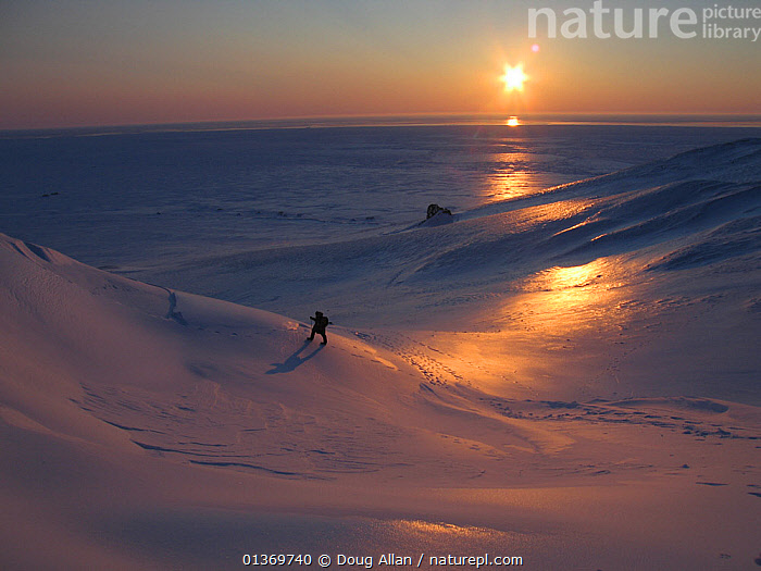 Man walking in vast icy wilderness. Kong Karl's Land, Svalbard, Norway, April. Freeze frame book plate page 17.  ,  ARCTIC,COLD,DUSK,EUROPE,FREEZE FRAME,ICE,ISOLATED,LANDSCAPES,ONE,PEACEFUL,SCANDINAVIA,SNOW,SPACE,SUNSET,WHITE,,Immense,Vast,Space,Open Spaces,  ,  Doug Allan