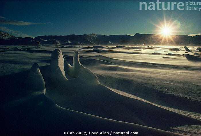 Snow carved by wind, Signy Island, South Orkney Islands, Antarctica. Freeze Frame book plate page 14.  ,  ANTARCTICA,BLEAK,COLD,FREEZE FRAME,ICE,LANDSCAPES,SNOW,SOUTH AMERICA,SUBANTARCTIC ISLANDS,SUB ANTARCTIC ISLANDS,SUN,SUNRISE,SUNSET  ,  Doug Allan