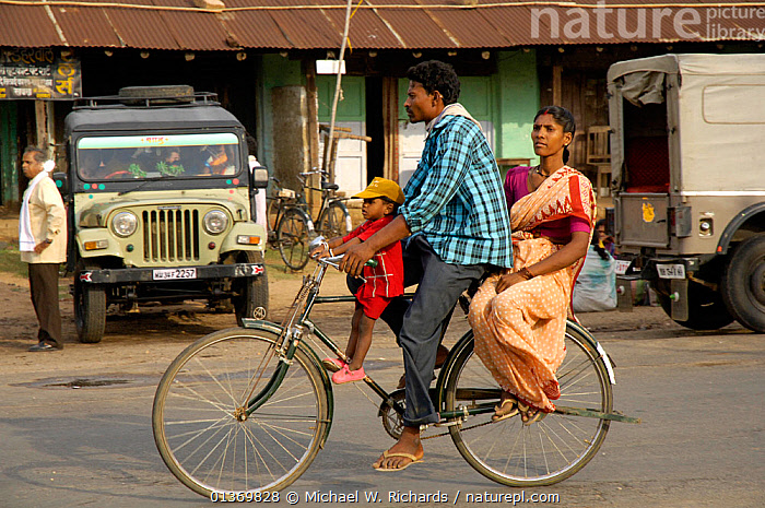 Indian family on a bicycle, Madhya Pradesh, India, 2006  ,  ADULTS,ASIA,BICYCLE,CARS,CHILDREN,CYCLING,FAMILIES,FEMALES,GROUPS,INDIAN SUBCONTINENT,JUVENILE,MALES,PARENTS,PEOPLE,PROFILE,ROADS,TRANSPORT,TRAVELLING,YOUNG  ,  Michael W. Richards