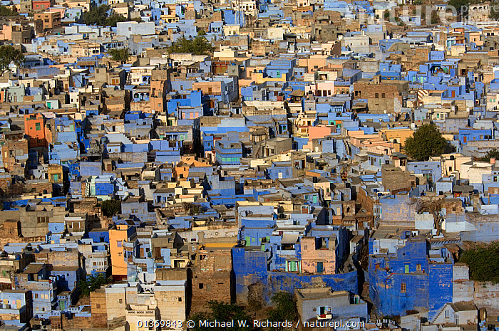 Looking down on the Blue city of Jodhpur, Rajasthan, India, 2010  ,  AERIAL VIEW,AERIALS,ASIA,BUILDINGS,CITIES,CITYSCAPES,HOMES,HOUSES,INDIAN SUBCONTINENT,LANDSCAPES,TRAVEL,URBAN  ,  Michael W. Richards
