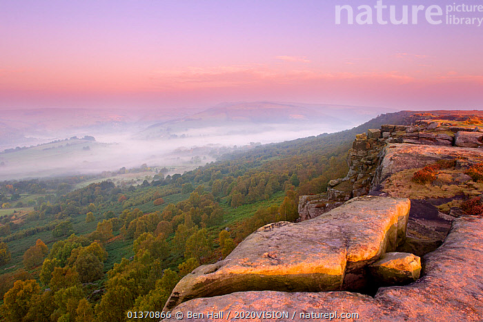 Scenic view from Curbar Edge at dawn, with mist in the distance, Peak District NP, UK, September 2011  ,  ATMOSPHERIC,DAWN,EUROPE,MOORLAND,PEAK DISTRICT,ROCKS,SKY,2020VISION,COLOURFUL,ENGLAND,LANDSCAPES,MIST,NP,SUNRISE,UK,National Park,United Kingdom  ,  Ben Hall / 2020VISION