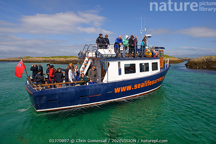 Tourists on board the Sea Life Surveys vessel Sula Beag, Cairns of Coll, Inner Hebrides, Scotland, UK, July 2011  ,  BOATS,COASTAL WATERS,EUROPE,GROUPS,WORKING BOATS,2020VISION,PEOPLE,PROFILE,SCOTLAND,SEAS,TOURISM,UK,WATCHING,United Kingdom  ,  Chris Gomersall / 2020VISION