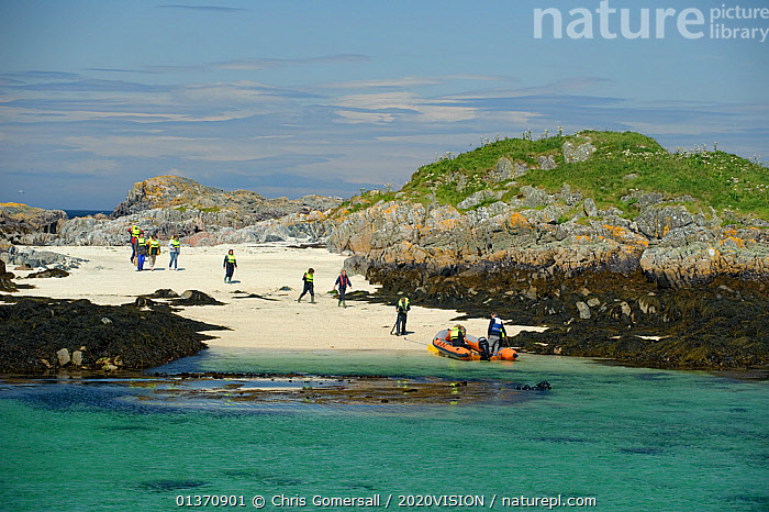 Tourists walking towards an inflatable boat, Cairns of Coll, Inner Hebrides, Scotland, UK, July 2011  ,  2020VISION,ISLANDS,LANDSCAPES,PEOPLE,SCOTLAND,SEAS,TOURISM,UK,WALKING,BEACHES,BOATS,COASTAL WATERS,EUROPE,GROUPS,OUTDOORS,United Kingdom  ,  Chris Gomersall / 2020VISION