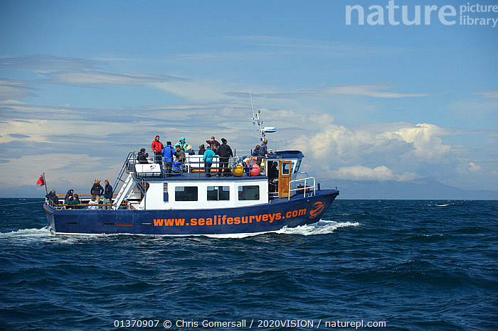 Sea Life Surveys vessel Sula Beag with tourists, near the Isle of Rum, Inner Hebrides, Scotland, UK, July 2011  ,  2020VISION,BLUE,PEOPLE,PROFILE,RHUM,SCOTLAND,SEAS,TOURISM,UK,BOATS,COASTAL WATERS,EUROPE,GROUPS,WORKING BOATS,United Kingdom  ,  Chris Gomersall / 2020VISION