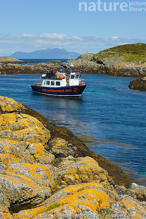 Wildlife watching tourists on the observation deck of Sea Life Surveys boat Sula Beag at the Cairns of Coll, Inner Hebrides, Scotland, UK, July 2011  ,  2020VISION,ISLANDS,LANDSCAPES,LEISURE,PEOPLE,SCOTLAND,SEAS,TOURISM,UK,WATCHING,BOATS,COASTAL WATERS,EUROPE,GROUPS,OUTDOORS,VERTICAL,WORKING BOATS,United Kingdom  ,  Chris Gomersall / 2020VISION