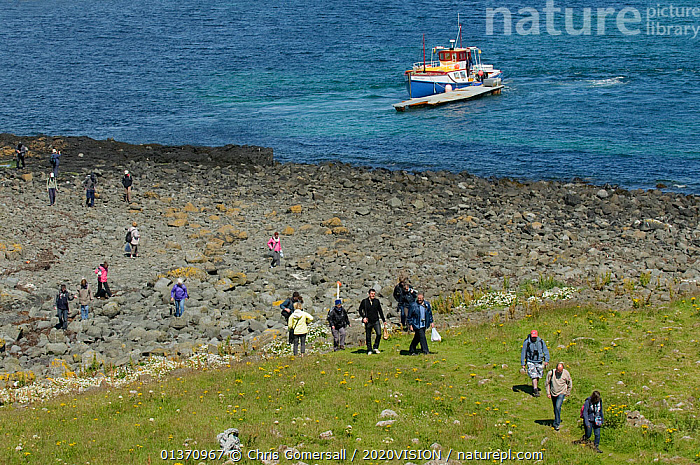 Wildlife tourists landing on island of Lunga in the Treshnish Isles, Inner Hebrides, Scotland, UK, July 2011  ,  BEACHES,BOATS,COASTAL WATERS,COASTS,EUROPE,GROUPS,MOORED,OUTDOORS,ROCKS,SUMMER,WORKING BOATS,2020VISION,LANDSCAPES,LEISURE,PEOPLE,SCOTLAND,SEAS,TOURISM,UK,WATCHING,United Kingdom  ,  Chris Gomersall / 2020VISION