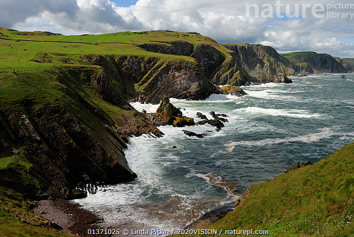 Cliffs showing rock striations and geological folding, Pettico Wick, St Abbs (St Abbs and Eyemouth Voluntary Marine Reserve), Berwickshire, Scotland, UK, August 2011  ,  ATLANTIC,CLIFFS,COASTS,EUROPE,2020VISION,GEOLOGY,LANDSCAPES,SCOTLAND,SEAS,UK,Marine,United Kingdom,2020cc  ,  Linda Pitkin / 2020VISION