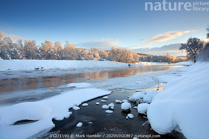 Partially frozen River Spey in winter, Cairngorms NP, Scotland, UK, December 2012  ,  CAIRNGORMS,COLD,EUROPE,FROZEN,UPLANDS,2020VISION,HIGHLANDS,ICE,LANDSCAPES,NP,RESERVE,RIVERS,SCOTLAND,SNOW,UK,WINTER,National Park,United Kingdom  ,  Mark Hamblin / 2020VISION