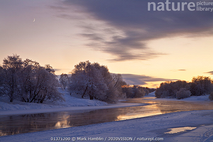 Partially frozen River Spey with frosted trees at dusk in winter, Cairngorms NP, Scotland, UK, December 2012  ,  2020VISION,DUSK,HIGHLANDS,ICE,LANDSCAPES,NP,RESERVE,RIVERS,SCOTLAND,SNOW,TIME EXPOSURE,UK,WINTER,BLURRED,CAIRNGORMS,CLOUDS,COLD,DAWN,EUROPE,FROZEN,MOON,MOVEMENT,TWILIGHT,UPLANDS,Weather,National Park,United Kingdom  ,  Mark Hamblin / 2020VISION
