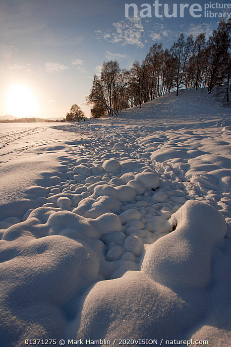 Snow covered rocks on the edge of Loch Insh, Cairngorms NP, Scotland, UK, January 2010  ,  2020VISION,COLD,EUROPE,HIGHLANDS,LANDSCAPES,ROCKS,SNOW,TREES,UK,UPLANDS,VERTICAL,WETLANDS,WINTER,PLANTS,United Kingdom  ,  Mark Hamblin / 2020VISION