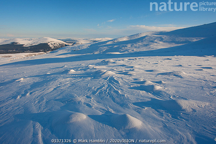 Snow covering the Cairngorm mountains and plateau in winter, Cairngorms NP, Scotland, UK, February 2010  ,  2020VISION,CAIRNGORMS,COLD,EUROPE,HIGHLANDS,LANDSCAPES,MOUNTAINS,NP,RESERVE,SNOW,UK,UPLANDS,WINTER,National Park,United Kingdom  ,  Mark Hamblin / 2020VISION
