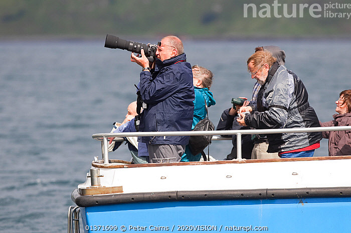 People watching and photographing White-tailed sea sea eagles near Skye, Inner Hebrides, Scotland, UK, June 2011  ,  BOATS,COASTAL WATERS,ECO TOURISM,EUROPE,OUTDOORS,PHOTOGRAPHY,2020VISION,CAMERA,CAMERAS,ECOTOURISM,LEISURE,PEOPLE,PHOTOGRAPHER,SCOTLAND,SEAS,TOURISM,UK,United Kingdom  ,  Peter Cairns / 2020VISION