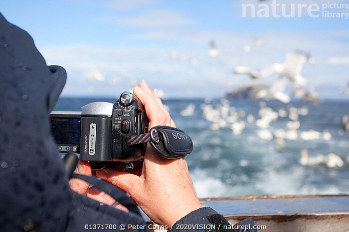 Tourist filming mixed flock of seabirds on boat trip to Bass Rock, Firth of Forth, North Berwick, Scotland, UK, July 2010  ,  2020VISION,BIRD WATCHING,CAMERA,CAMERAS,ECOTOURISM,FLOCKS,LEISURE,MIXED FLOCKS,PEOPLE,PHOTOGRAPHER,SCOTLAND,SEAS,TOURISM,UK,BIRDWATCHING,BOATS,COASTAL WATERS,ECO TOURISM,EUROPE,FLYING,OUTDOORS,PHOTOGRAPHY,United Kingdom  ,  Peter Cairns / 2020VISION