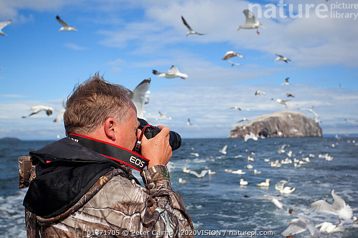 Photographer taking pictures of a mixed flock of seabirds on boat trip to Bass Rock, Firth of Forth, North Berwick, Scotland, UK, July 2010. 2020VISION Book Plate.  ,  2020VISION,bird watching,camera,cameras,ecotourism,FLOCKS,LEISURE,MIXED FLOCKS,PEOPLE,photographer,SCOTLAND,seas,TOURISM,UK,2020vision book plate,birdwatching,BOATS,COASTAL WATERS,eco tourism,EUROPE,FLYING,MAN,outdoors,PHOTOGRAPHY,United Kingdom  ,  Peter Cairns / 2020VISION