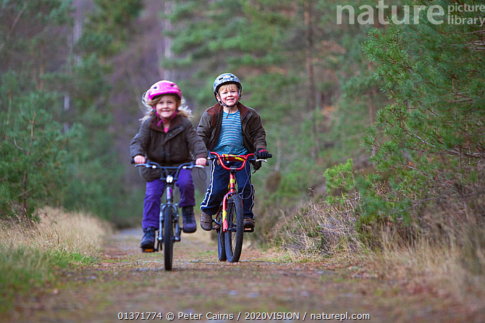 Two children riding bicycles along a forest path, Inshriach Forest, Cairngorms NP, Scotland, UK, November 2011 Model released. Did you know? The word Bicycle comes from the French 'Bicyclette'; before this word was popular they were called 'Velocipides'.  ,  2020VISION,BOY,CYCLING,HIGHLANDS,LEISURE,NP,PEOPLE,PINE FOREST,PINEWOODS,RESERVE,SCOTLAND,SMILING,UK,WOODLANDS,CAIRNGORMS,CALEDONIAN,CAUCASIAN,CHILDREN,EUROPE,picday,FORESTS,GIRL,HAPPY,LOOKING AT CAMERA,OUTDOORS,REGENERATION,RESTORATION,TREES,TWO,UPLANDS,National Park,PLANTS,United Kingdom  ,  Peter Cairns / 2020VISION
