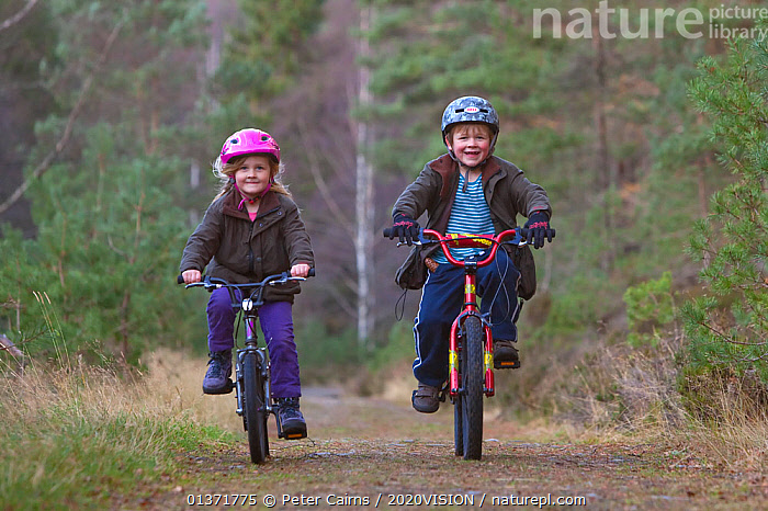 Two children riding bicycles along a forest path, Inshriach Forest, Cairngorms NP, Scotland, UK, November 2011 Model released. 2020VISION Book Plate. Did you know? The Cairngorms is the UK's largest national park with an area of 4528 sq km, more than twice the size of the Lake District.  ,  2020VISION,Boy,CYCLING,HIGHLANDS,LEISURE,NP,PEOPLE,picday,pine forest,pinewoods,RESERVE,SCOTLAND,SMILING,UK,WOODLANDS,2020vision book plate,cairngorms,Caledonian,Caucasian,CHILDREN,EUROPE,FORESTS,girl,happy,looking at camera,outdoors,regeneration,restoration,TREES,two,UPLANDS,National Park,PLANTS,United Kingdom  ,  Peter Cairns / 2020VISION