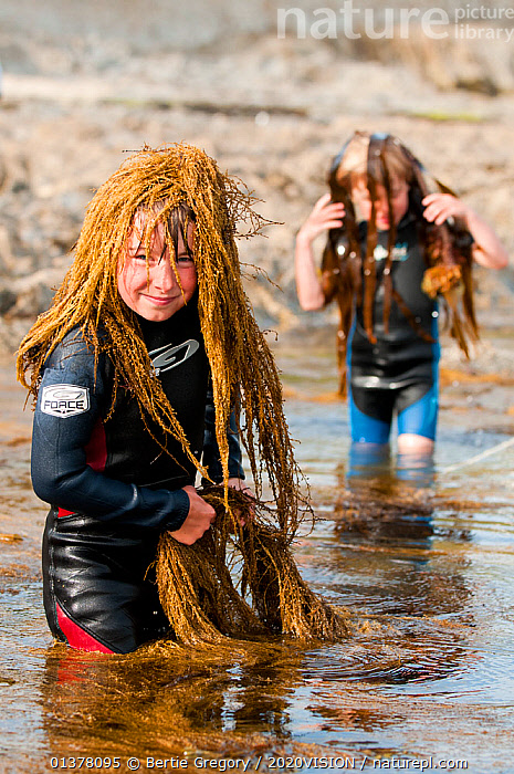Young boys playing, putting seaweed on their heads whilst rockpooling, Falmouth, Cornwall, England, UK, July 2011 Model released  ,  2020VISION,BOY,EDUCATION,ENGLAND,LEARNING,LEISURE,PEOPLE,SEAS,SMILING,UK,BEACHES,CAUCASIAN,CHILDREN,COASTAL WATERS,COASTS,EUROPE,HAPPY,HUMOROUS,LITTORAL,OUTDOORS,TIDEPOOLS,TWO,Concepts,Intertidal,United Kingdom,2020cc  ,  Bertie Gregory / 2020VISION