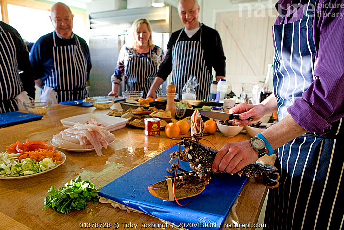 Group of people on a seafood cookery course, during the course, run by Dorset-based Fraser Christian, people learn about fish and shellfish cookery skills, with an emphasis on locally-caught sustainable species, Dorset, England, UK, February 2011 Model released  ,  2020VISION,COOKING,EDUCATION,ENGLAND,FOOD,PEOPLE,SEAS,UK,CAUCASIAN,EUROPE,FIVE,GROUPS,INDOORS,MEN,SUSTAINABLE,WOMAN,United Kingdom  ,  Toby Roxburgh / 2020VISION