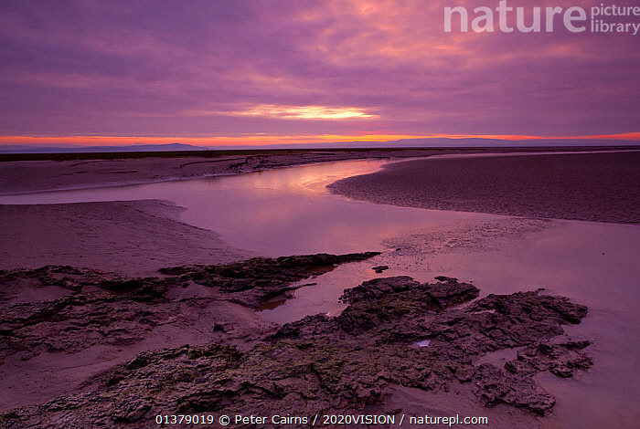 Estuarine river inlet running across mudflats at dawn, Morecambe Bay, Cumbria, England, UK, February. 2020VISION Exhibition.  ,  2020vision exhibition,CLOUDS,COASTS,DAWN,EUROPE,exhibition,mudflats,SALTMARSHES,SKIES,SKY,SUNSET,2020VISION,COLOURFUL,DUSK,ENGLAND,LANDSCAPES,PURPLE,RIVERS,SUNRISE,UK,Weather,United Kingdom  ,  Peter Cairns / 2020VISION