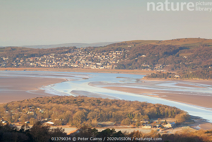 View from Arnside Knott over the River Kent to Grange-over-Sands, Cumbria, England, UK, February  ,  2020VISION,BUILDINGS,ENGLAND,LANDSCAPES,RIVERS,UK,COASTS,EUROPE,SALTMARSHES,United Kingdom  ,  Peter Cairns / 2020VISION