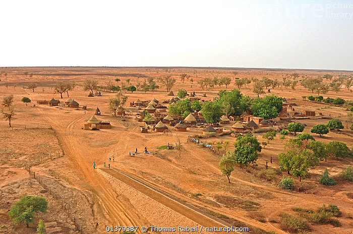 Typical Nigerien village settlement seen from the air. Sahelo-Sudanese Biome, W National Park (UNESCO, IUCN & RAMSAR), Niger. Aerial census, May 2011.  ,  AERIALS,AFRICA,ARID,BUILDINGS,DESERTS,LANDSCAPES,NORTH AFRICA,OUTDOORS,PEOPLE,ROADS,SAHARA,SETTLEMENTS,TRADITIONAL,TRIBES,UNESCO,VILLAGES  ,  Thomas Rabeil