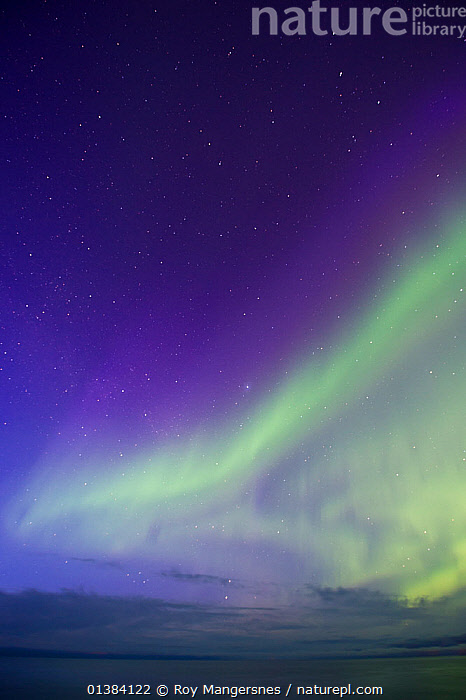 Aurora Borealis above the Arctic Ocean off the northen coast of Finnmark, Norway, April, ARCTIC,AURORA BOREALIS,beauty in nature,BLUE,catalogue4,Finmark,glowing,GREEN,LANDSCAPES,lit up,magical,meteorology,nature,NIGHT,Nobody,Northern Lights,NORWAY,OCEAN,SKIES,SKY,VERTICAL,Europe,Scandinavia,Wonder,Spectacular,, Roy Mangersnes