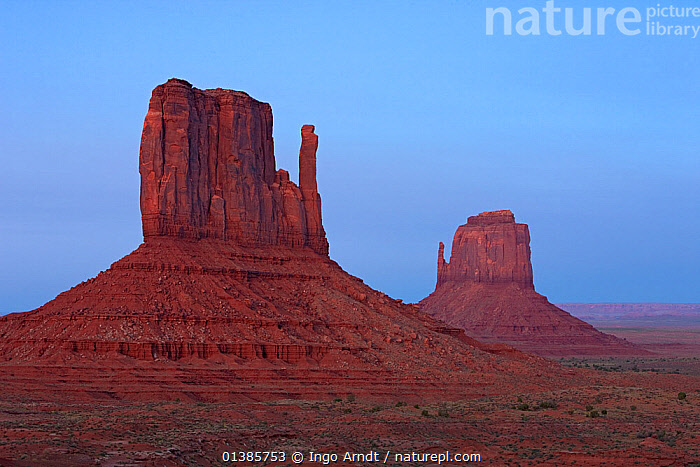East and West Mittens, Monument Valley, Navajo Tribal Park, Arizona, USA, September 2010  ,  ATTRACTIONS,DESERTS,LANDMARK,LANDSCAPES,MONUMENTS,NORTH AMERICA,ROCK FORMATIONS,SANDSTONE,TRAVEL,USA,VALLEYS  ,  Ingo Arndt
